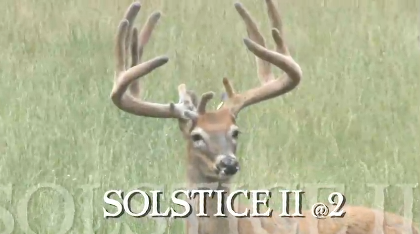 Solstice II Video